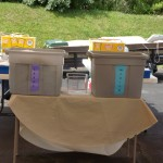 Large and Medium Bins at The Atlantic Club Family Fun Day